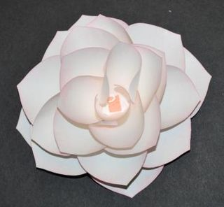 Paper Rose Tutorial 8