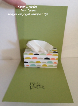 Tissue Card Open.JPG