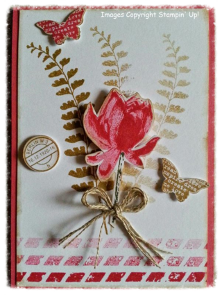 Corina's Lotus Blossom