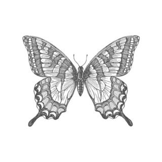 Swallowtail Spring Mini 2013