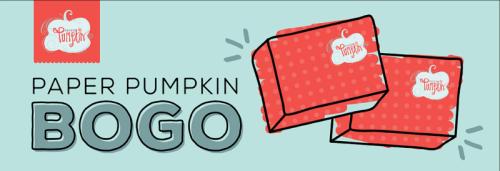 Promotion Paper Pumpkin