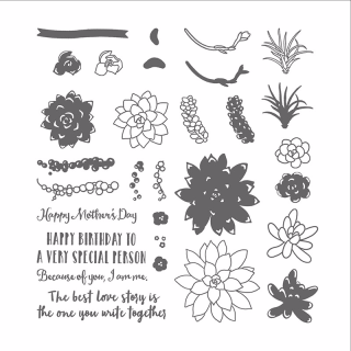 Oh So Succulent Stamp Set